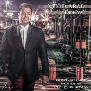 دانلود آهنگ سعید عرب دنیا