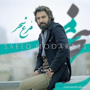 متن آهنگ جدید مرغ سحر سعید مدرس