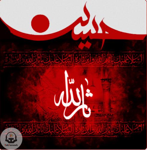 دانلود مداحی گلی گم کرده ام میجویم او را محمود کریمی