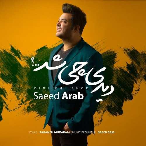 سعید عرب - دیدی چی شد