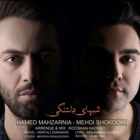مهدی شکوهی و حامد محضرنیا - شبهای دلتنگی