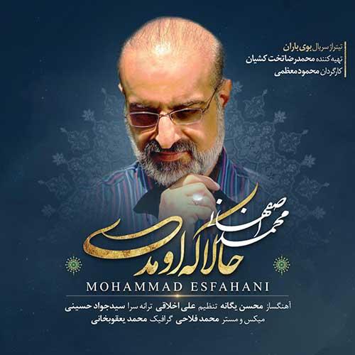 محمد اصفهانی - حالا که اومدی