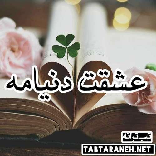 عشقت دنیامه علی پارسا