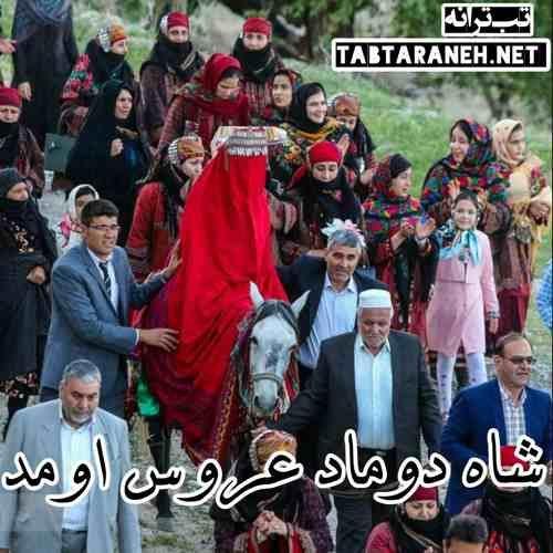 شاه دوماد عروس اومد