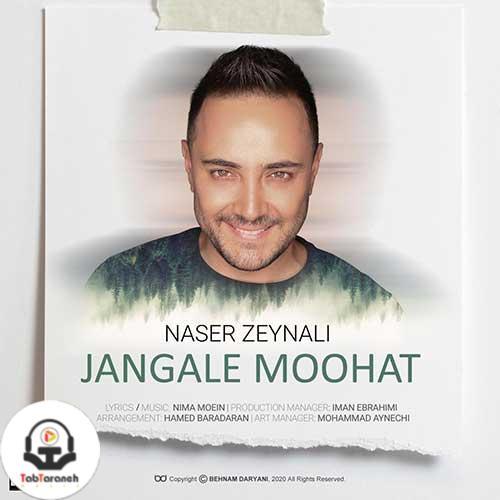 ناصر زینغلی جنگل موهات