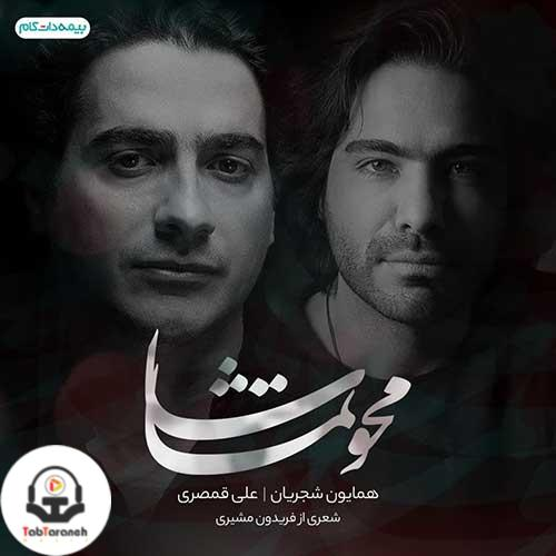 همایون شجریان و علی قمصری محو تماشا