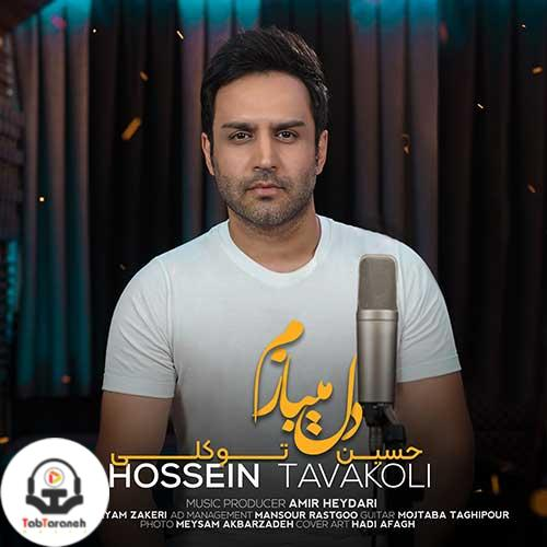 حسین توکلی - دل میبازم